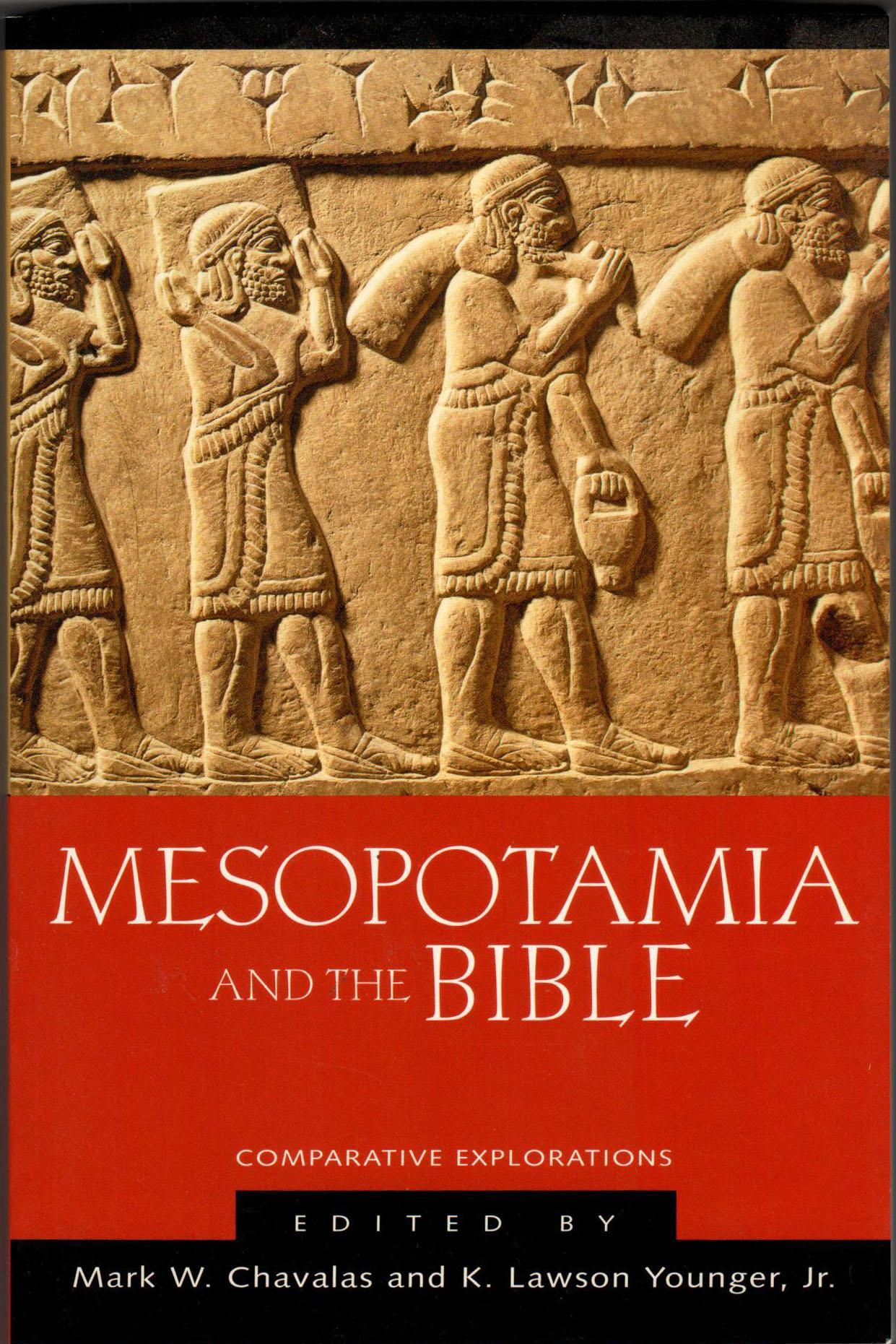 meso_-_bible