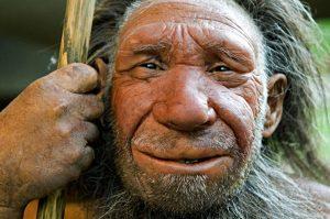 homo_neanderthalensis_2