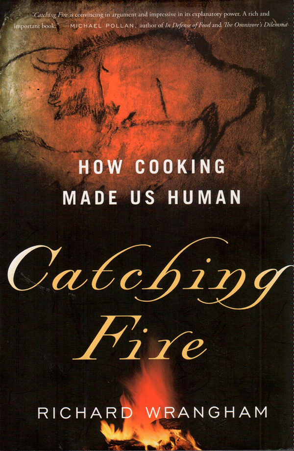 catching fire-1
