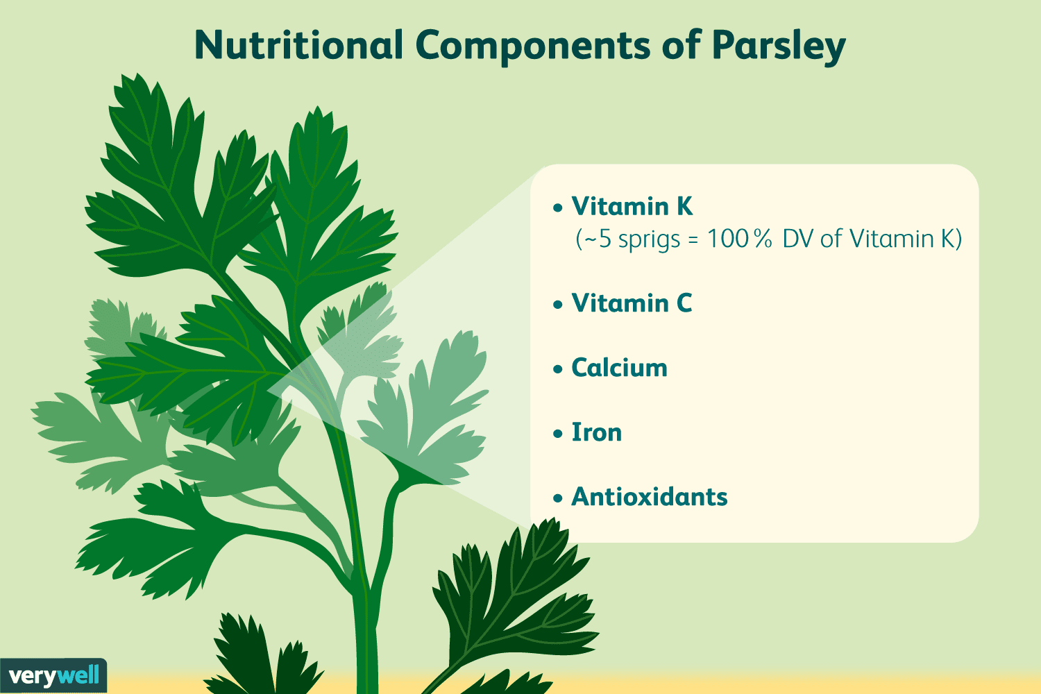 parsley-for-better-digestion-88688-01-fceb703946924b469b6bc7b8126570e0
