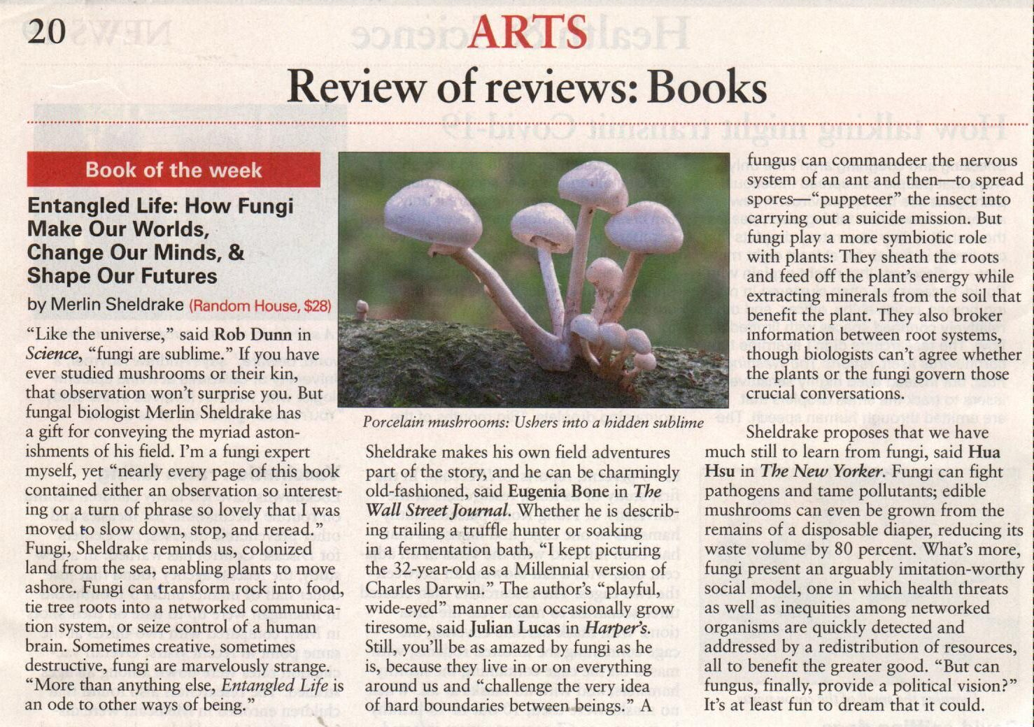 fungi article