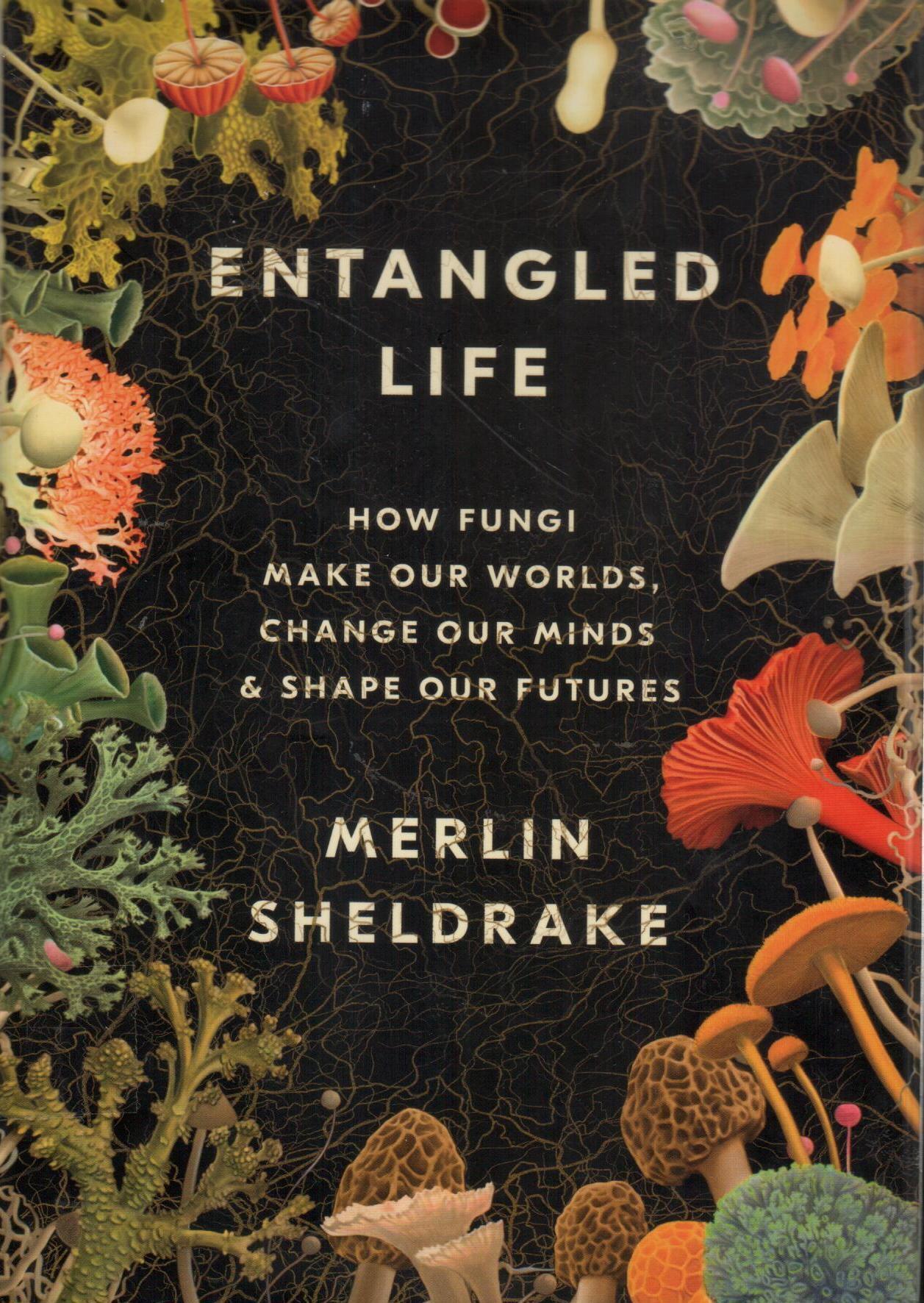 entangled life (1)