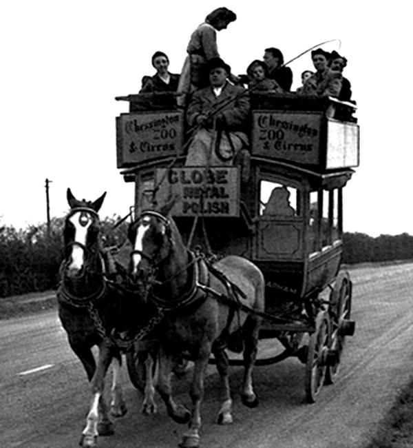 omnibus one