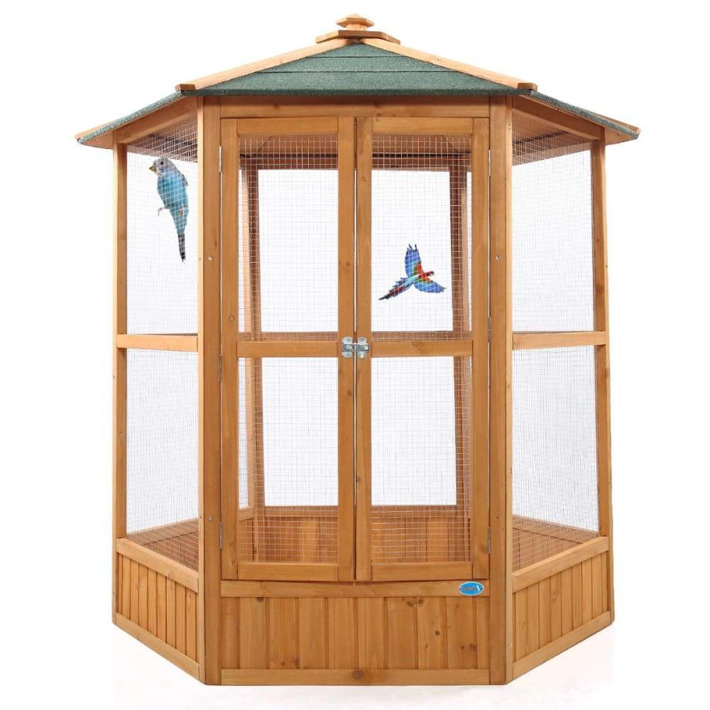 parrot house three